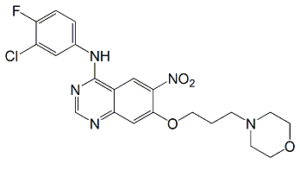 Canertinib Nitro Impurity